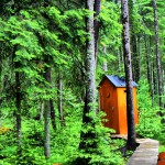 Canada2009 Outhouse HDR